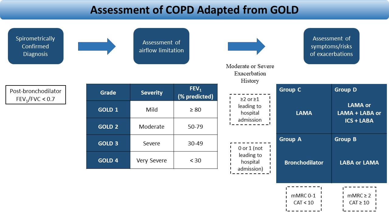 Figure 1. COPD assessment adapted from GOLD 2020 report.