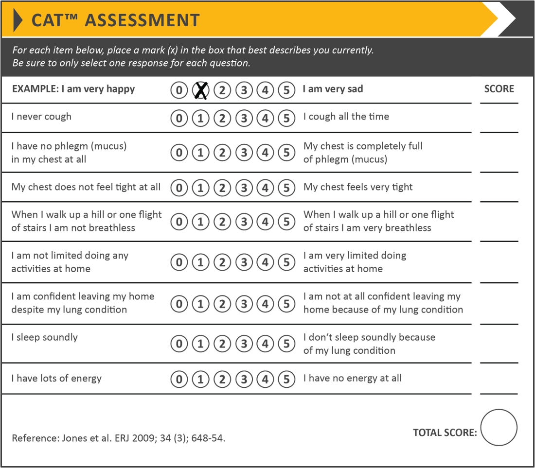 Table 2. COPD Assessment Test (CAT)