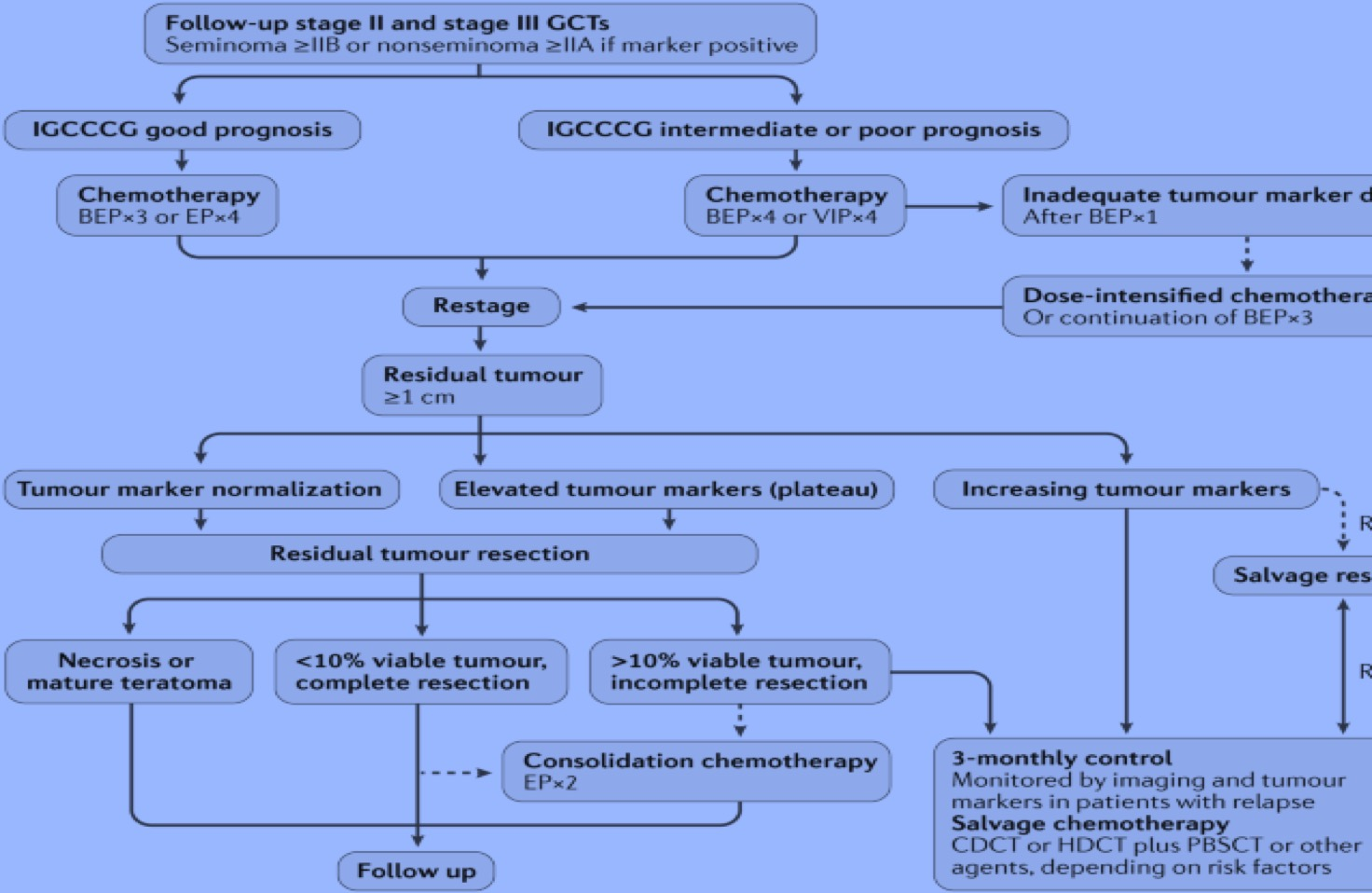 Advanced stage testicular cancer management.