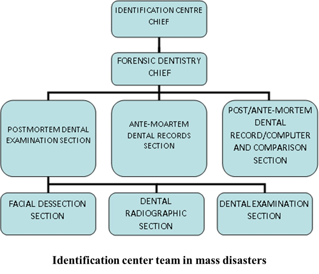 Forensic Odontology Article Statpearls